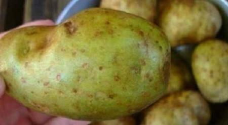 تحذير من تناول البطاطا التي تحتوي على هذه العلامات
