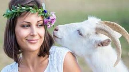 فوائد مذهلة لحليب الماعز الطبيعي للبشرة