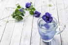 نبات يحسن الذاكرة ويكافح الشيخوخة
