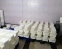 الغذاء والدواء مع الامن العام تكبس على مصانع وتضبط 27 طن من الألبان والأجبان المغشوشة